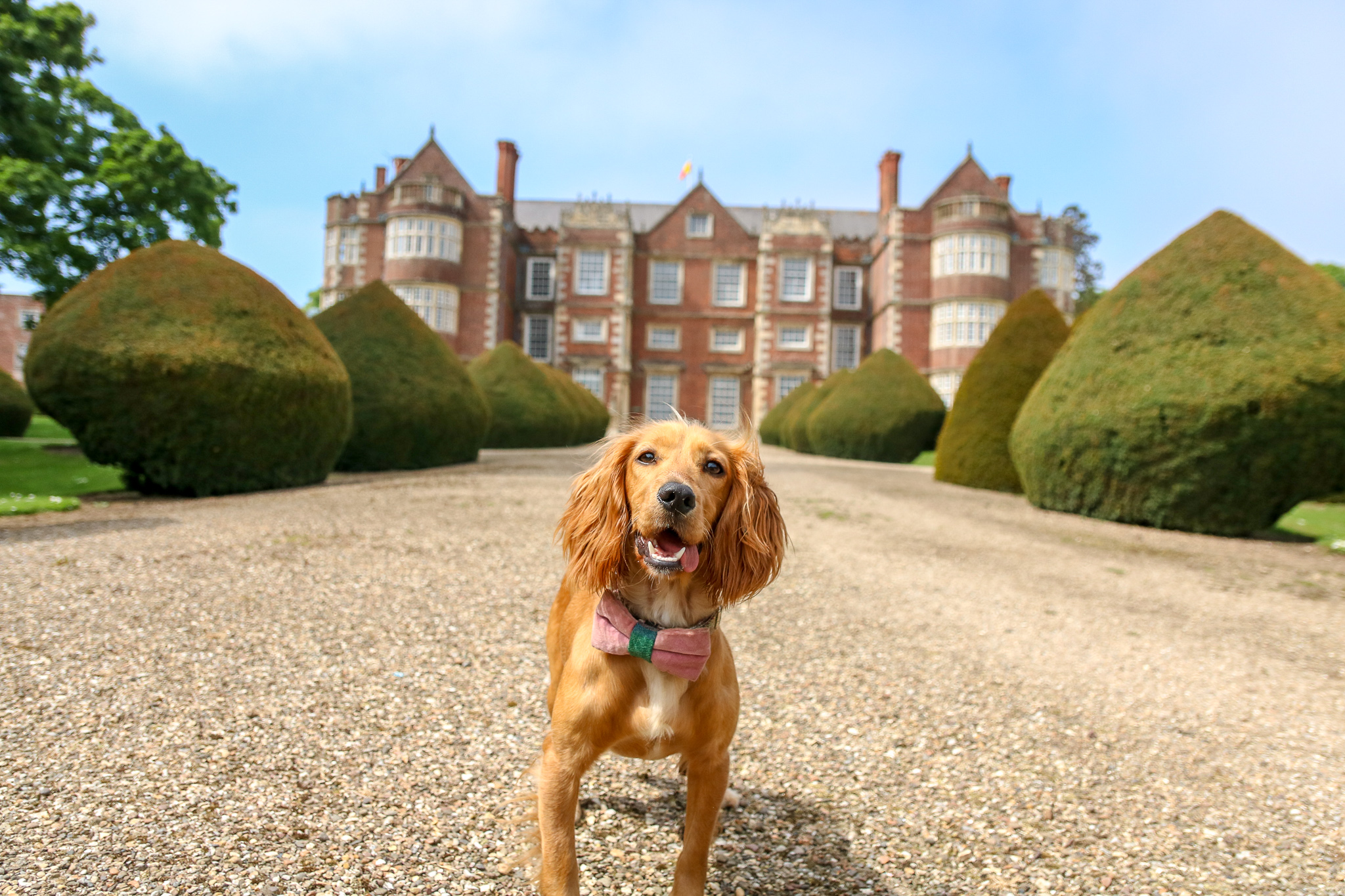 Dog Friendly East Yorkshire: Burton Agnes Hall and walks, Bridlington