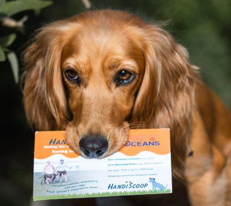 Reduce Your Plastic Paw Print – featuring our review of the HandiScoop